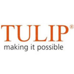 Tulip Telecom appoints advisor to raise fresh funds to repay outstanding FCCBs