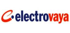 Tata Motors sells majority stake in Norwegian cleantech engineering firm to Electrovaya