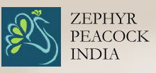 Zephyr Peacock makes second close of its third India-focused fund