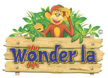 Wonderla IPO subscribed 38x