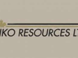 Canada's Niko Resources yet to find buyer for India assets