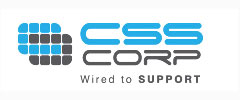 PE-controlled CSS eyes acquisition of mid-large size IT firms in US & Europe
