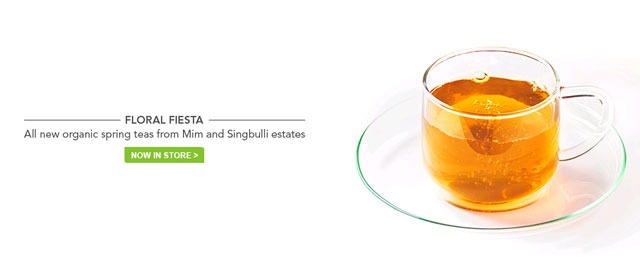 Teabox raises $6M in Series A from JAFCO Asia, Accel, Keystone, Dragoneer