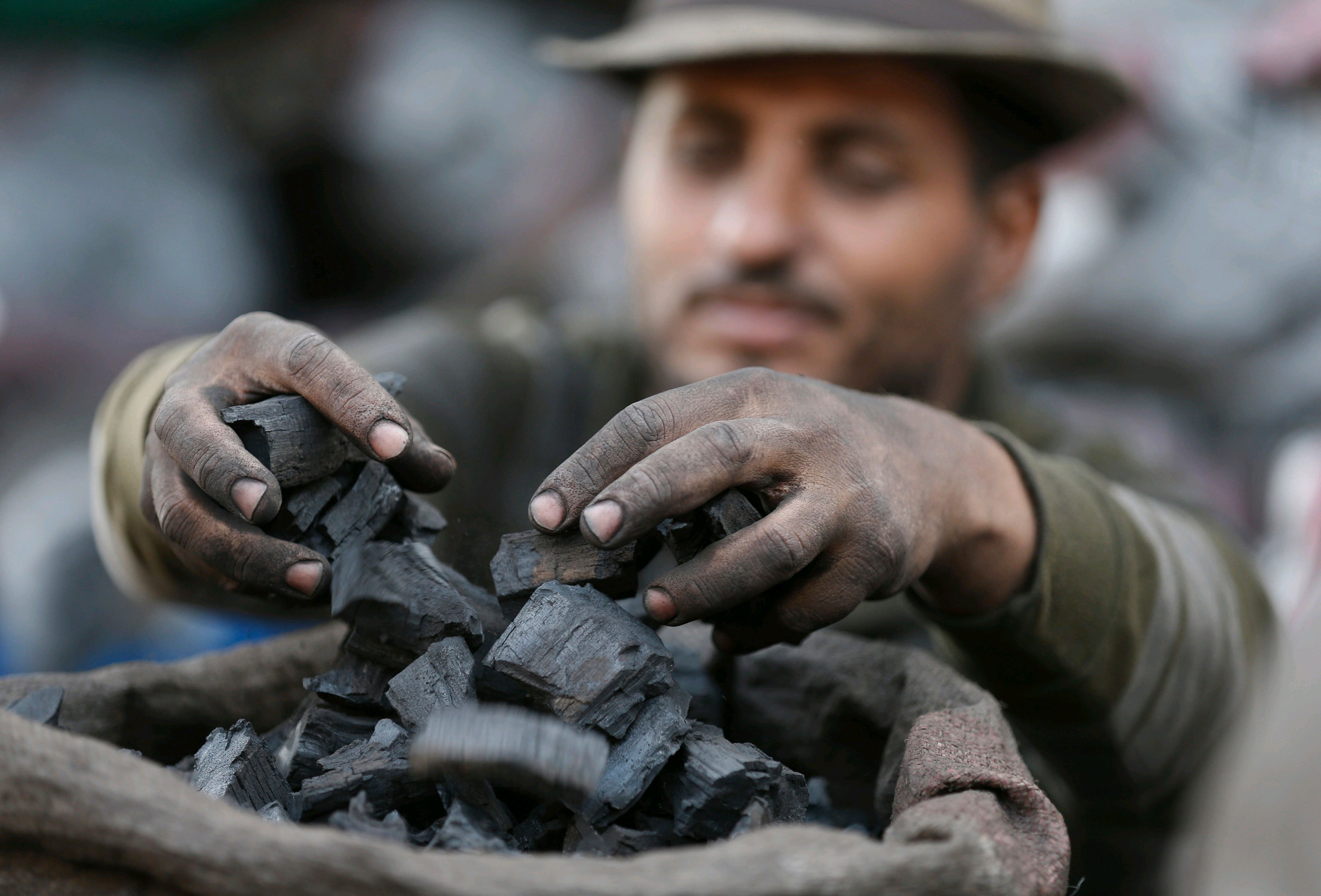 Coal auction unlocks $64B