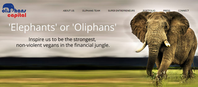 Oliphans Capital invests $2M in toy maker Prothom