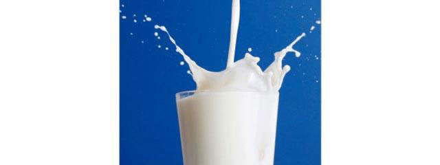 Prabhat Dairy's IPO fails to sail through; extends issue