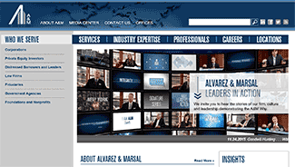 Alvarez & Marsal launches PE consulting services in India