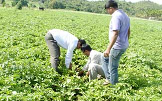 SV Agri raises funds from Lok Capital, Aspada
