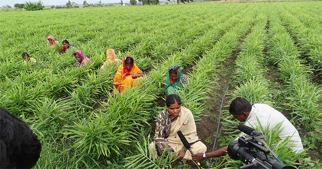 ICRISAT incubator to float around $15M fund for agri startups