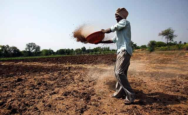 Govt seeks help from Naveen Jindal-promoted JSPL to salvage Talcher fertiliser plant