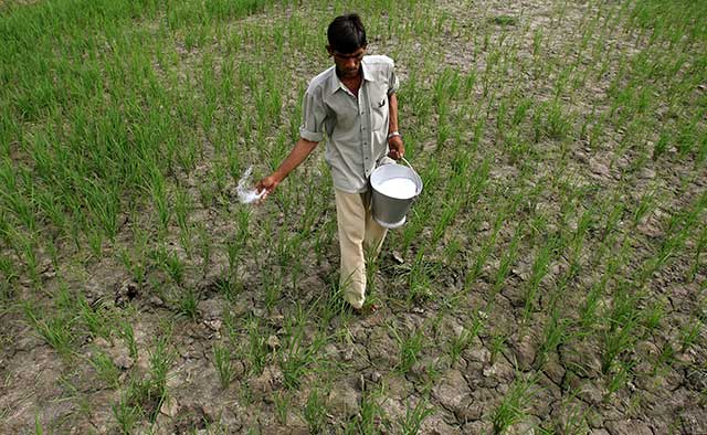 India set to import first tranche of urea at $227 per tonne; may save $300 million in FY17