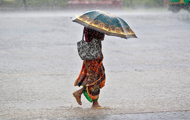 Weather agency predicts normal to excess rainfall this year