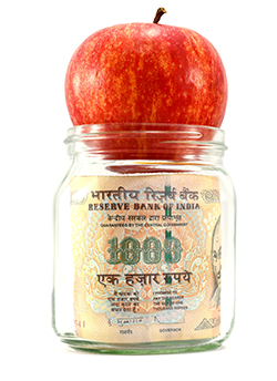 Motilal Oswal PE fund invests in branded staple food firm Ganesh Grains