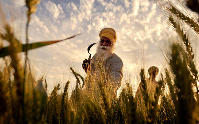 India July-Sept GDP growth quickens to 7.3%