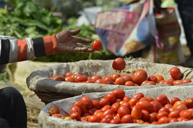 India inflation quickens in February on rising food prices