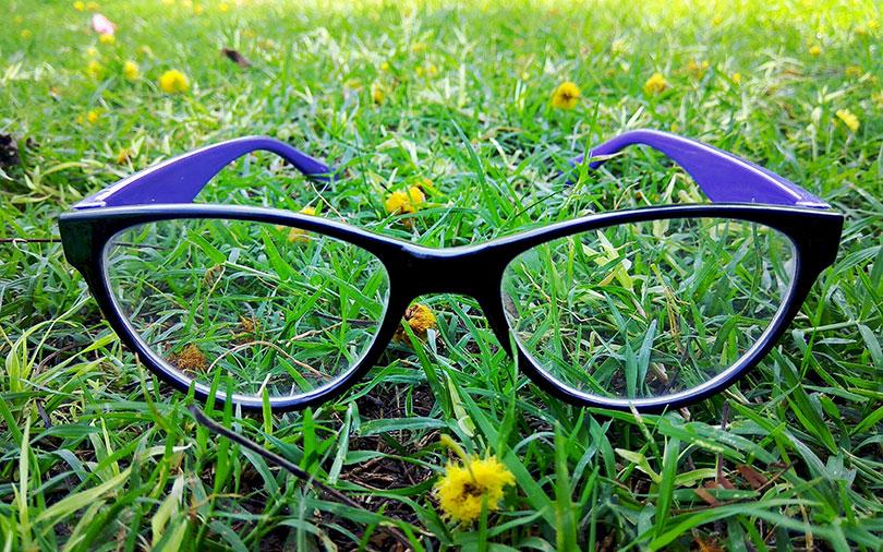 Company watch: Eyewear retailer Lenskart sets sight on success