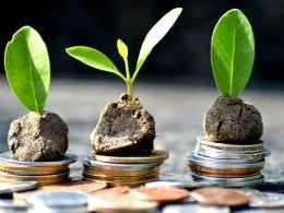 BimaPe backer Gemba Capital launches micro-venture fund for early-stage startups
