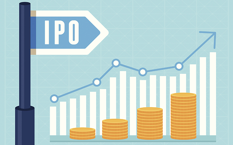 From shrimps to solar: Indian companies set for another busy IPO year