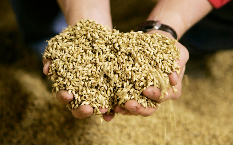 French malt giant Soufflet close to big India acquisition