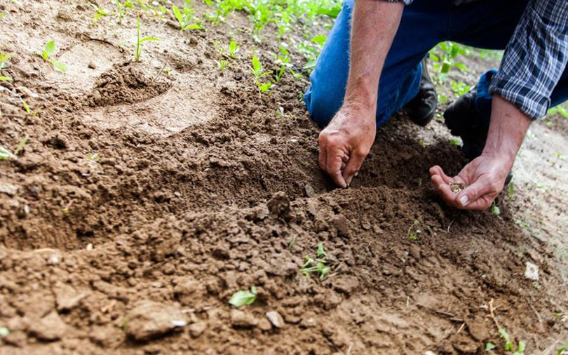 Agri-tech startup CropIn raises pre-Series A funding