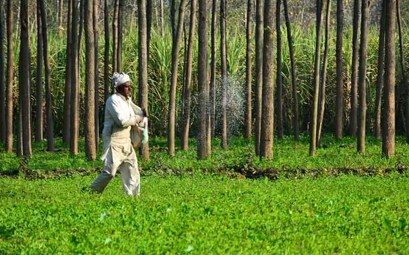 Chiratae, Gates Foundation back agri-tech startup CropIn in Series B round