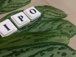 Reliance Nippon Life IPO subscribed 81 times