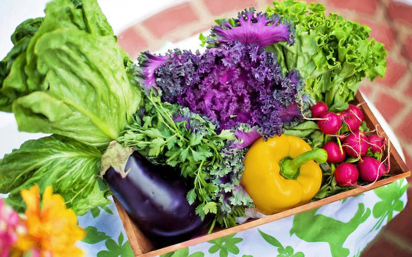 LGT Impact leads investment in fresh-produce distributor Waycool
