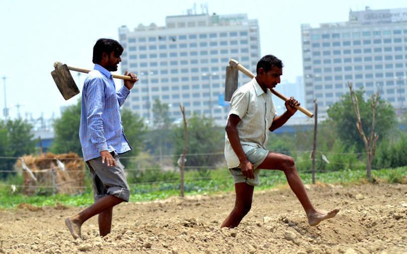 Policy tracker: Have the Modi govt's plans to tackle farm distress come a cropper?